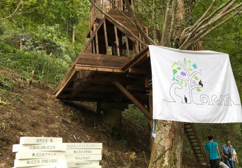 立命館大生がツリーハウス 木之本「大見いこいの広場」で製作、9月23日に完成イベント